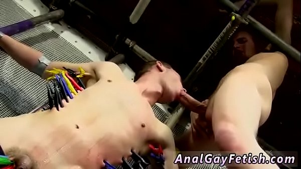 Small cock, Feed